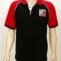 Polo Shirt - $30